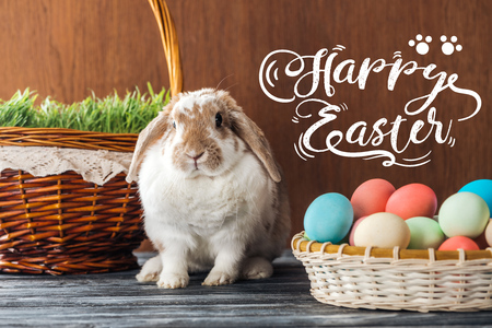 cute bunny near wicker baskets with green grass and colorful chicken eggs with happy Easter lettering on wooden background Stok Fotoğraf