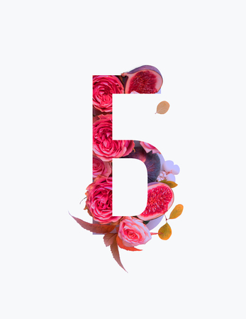 Cyrillic letter with pink roses and figs isolated on white Stock Photo