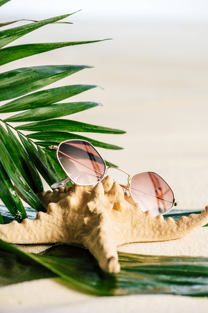Sunglasses, palm leaves and starfish on white background