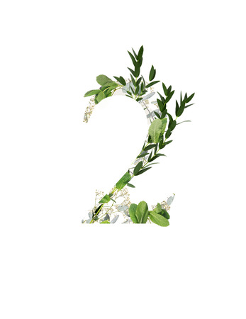 number 2 with white flowers and green leaves isolated on white Archivio Fotografico - 121459776