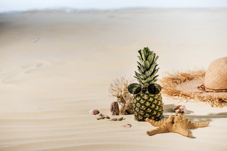 pineapple with sunglasses, starfish, Straw Hat and sea stones on sandy beach with copy space