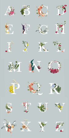 multicolored bright letters with plants and flowers isolated on grey, English alphabet