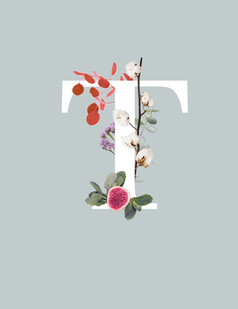 white letter T with cotton branch, fig and green leaves isolated on grey 스톡 콘텐츠