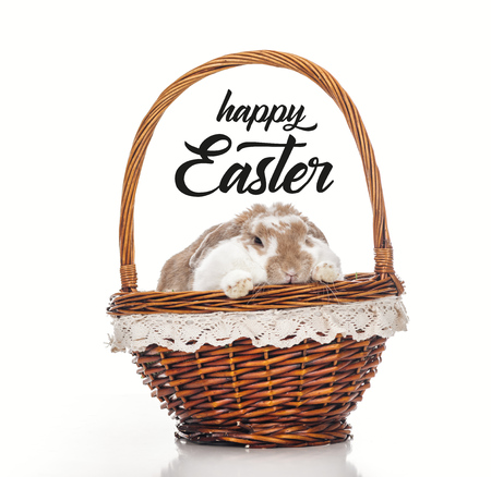 cute bunny in wicker basket isolated on white with happy Easter lettering Stock Photo