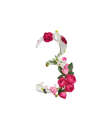 number 3 with pink roses and green leaves isolated on white Archivio Fotografico - 121461095