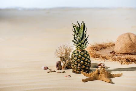 pineapple, Straw Hat, starfish, coral and sea stones on sandy beach with copy space Stock Photo