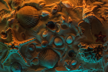 top view of seashells, starfish, sea stones and corals on sand with orange and blue lights