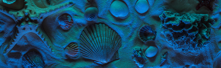 Panoramic shot of seashells, starfish, sea stones and coral on sand with blue light