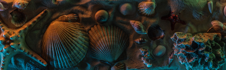 Panoramic shot of seashells, starfish, sea stones and corals on sand with orange and blue lights