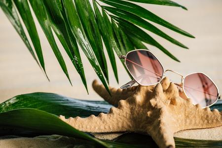 Sunglasses, starfish and palm leaves on sandy beach