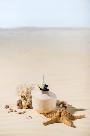 Coconut cocktail, starfish, coral and sea stones on sandy beach with copy space 免版税图像