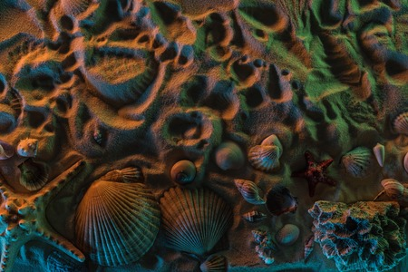 Top view of  different seashells, starfish, corals and traces of them on sand with orange, green and blue lights 스톡 콘텐츠