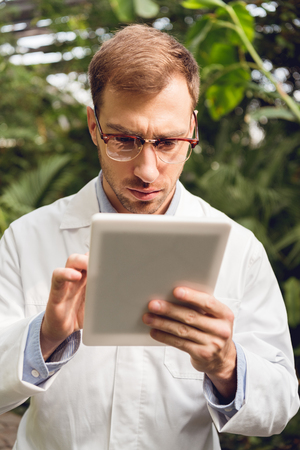 Concentrated handsome scientist in white coat and glasses using digital tablet in orangery