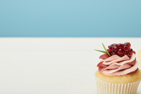 Tasty cupcake with garnet and cream on white surface isolated on blue background