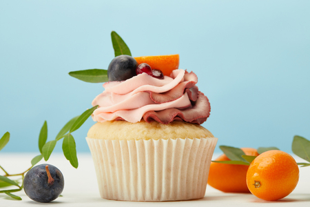 Cupcake with cream, grapes and kumquats on white surface isolated on blue background