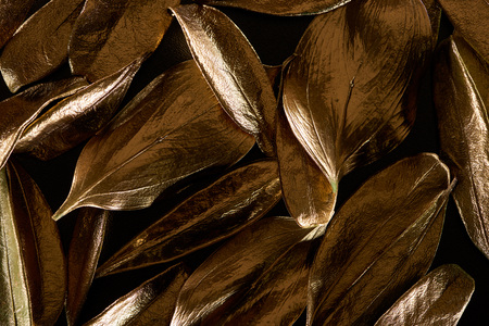 close up of golden metal decorative leaves isolated on black 版權商用圖片
