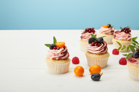 sweet cupcakes with cream and garnets on white surface isolated on blue Banco de Imagens