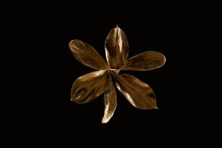 Top view of golden metal decorative leaves isolated on black background