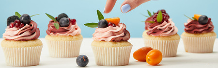 panoramic shot of woman with cupcakes isolated on blue