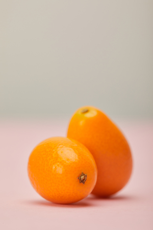 Two ripe kumquats on pink surface on grey background