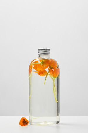 Organic beauty product in transparent bottle with orange flowers on white table isolated on grey background 版權商用圖片