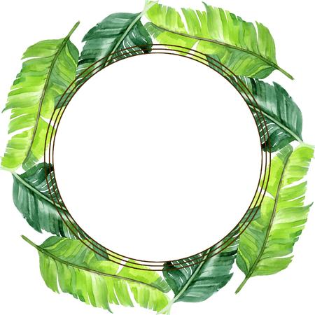 Exotic tropical hawaiian summer. Palm beach tree leaves jungle botanical. Watercolor background illustration set. Watercolour drawing fashion aquarelle isolated. Frame border ornament square. Foto de archivo - 123099859