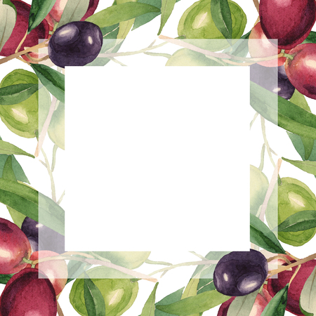 Fresh olives healthy food. Watercolor background illustration set. Watercolour drawing fashion aquarelle isolated. Frame border ornament square.