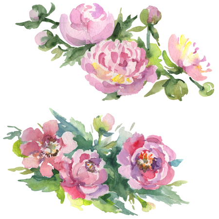 Peony bouquet floral botanical flowers. Wild spring leaf wildflower isolated. Watercolor background illustration set. Watercolour drawing fashion aquarelle. Isolated bouquets illustration element.
