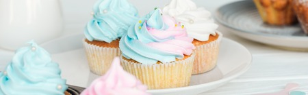 Panoramic shot of colorful cupcakes with frosting on plate