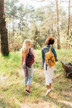 back view of two multiethnic friends with backpacks walking in forest Banco de Imagens