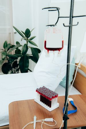 Bed with pillow, green plant, packed cells and blood test tubes in hospital ward Фото со стока
