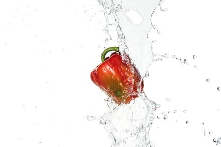 tasty fresh red bell pepper with clear water splash and drops isolated on white Stock Photo