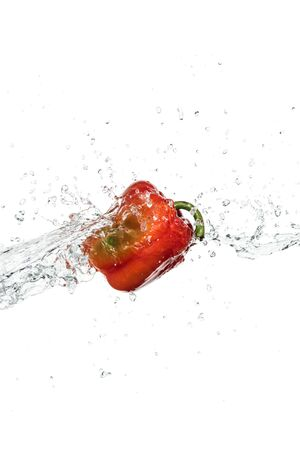 whole tasty fresh red bell pepper with clear water splash and drops isolated on white