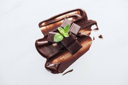 Top view of pieces of chocolate bar and fresh mint on white background