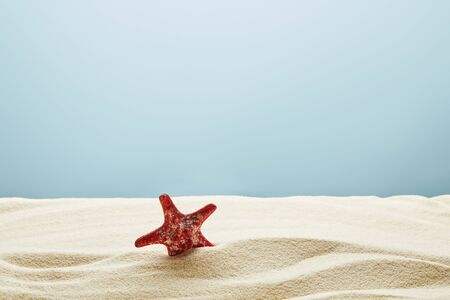 Wavy textured golden sand with red starfish on blue background