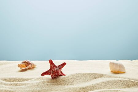 Wavy textured golden sand with red starfish and seashells on blue background