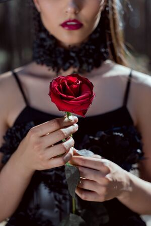 Cropped view of young woman in witch costume holding red rose in hands