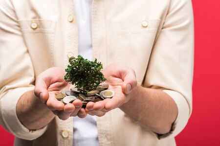 Cropped view of man holding money tree and coins isolated on pink background Stock Photo