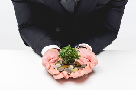 Cropped view of man in suit holding coins and money tree on grey background