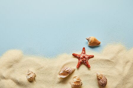 Top view of textured wavy sand with seashells and starfish on blue background with copy space