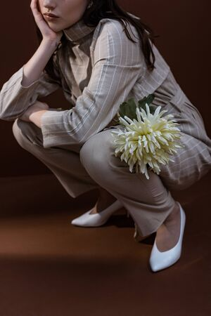 Cropped view of fashionable model holding chrysanthemum in hands, sitting on brown background