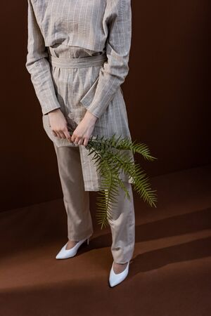 High angle view of young model holding fern leaves in hands, standing on brown background 写真素材