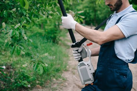 Cropped view of gardener in overalls trimming trees with telescopic pole saw in garden