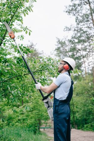 Gardener in overalls and helmet trimming trees with telescopic pole saw in garden