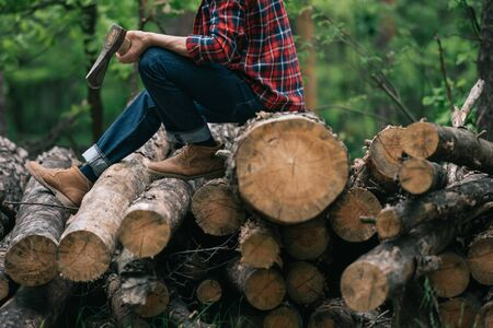 Partial view of lumberman holding ax while sitting on tree trunks in forest Standard-Bild