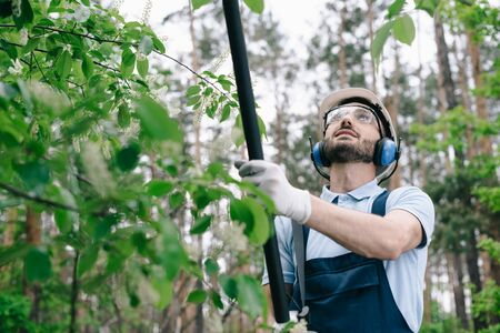 Smiling gardener in helmet, protective glasses and hearing protectors trimming trees with telescopic pole saw in garden Banco de Imagens