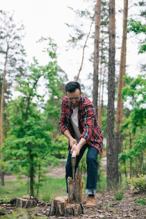 Lumberman in denim jeans and plaid shirt cutting wood with ax in forest 免版税图像