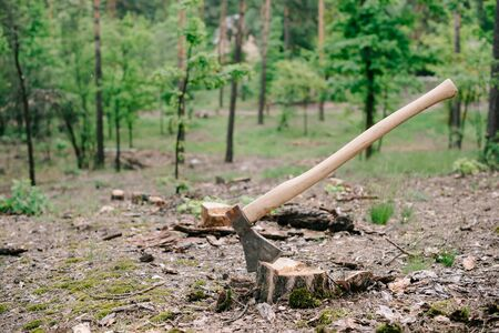 Sharp, heavy ax with wooden handle on wood stump in forest 版權商用圖片