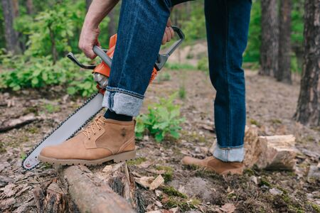 Partial view of lumberer in boots cutting tree trunk with chainsaw in forest Stockfoto