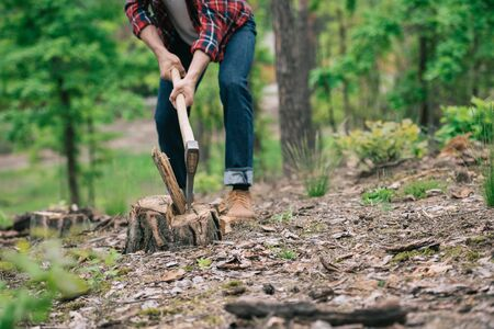 Partial view of lumberer in denim jeans chopping wood with ax in forest